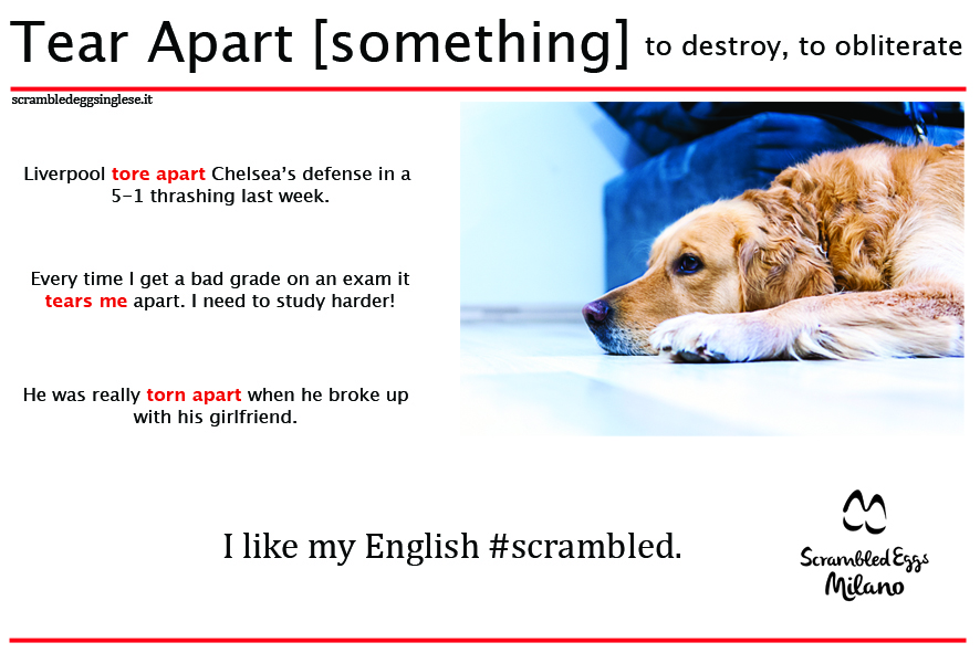 Learn phrasal verbs with Adele