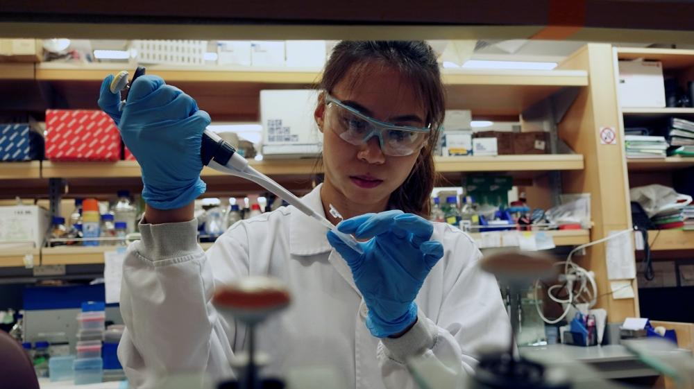 Learn English with the News – World leaders help in coronavirus vaccine fight